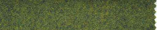 【Hs_st38】グリーン