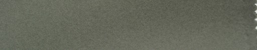 【Hs_com76】ライトモスグリーン