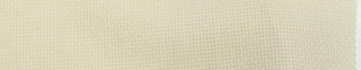 【Ca_tws08】オフホワイト