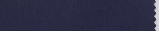 【P_6s06】ブルーパープル
