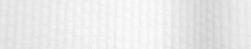 【Brz_22】ホワイト×ホワイト