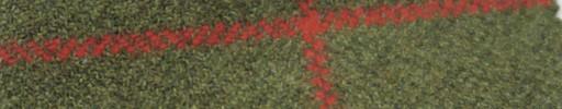 【Ph_gl01】ライトグリーン+8.5×7cm赤ウィンドウペーン