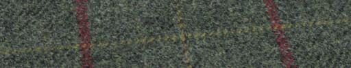 【Hs_gm03】ライトグリーン+ファンシープレイド