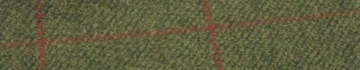 【Hs_gm11】グリーンミックス+8.5×5.5cm赤×赤茶プレイド
