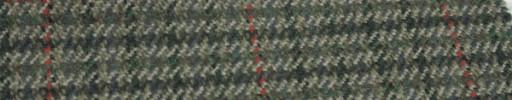 【Hs_gm13】グリーンミックスガンクラブチェック+6×5cm赤ウィンドウペーン