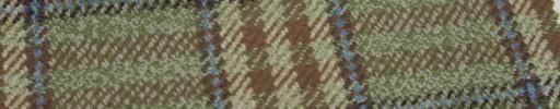 【Hs_gm28】ブラウン×グリーン×水色ミックスタータン