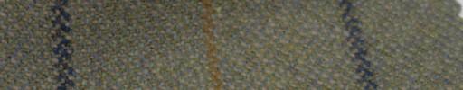 【Ph_gl40】グリーンベージュミックス+4×3cmファンシープレイド
