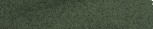 【Ca_6w760】グリーン
