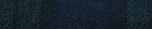 【Ht_5w077】ブラックウォッチタータン・ライト