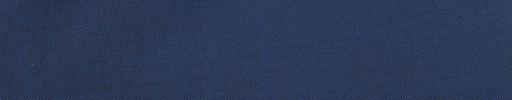 【Ca_81s071】ブルーパープル