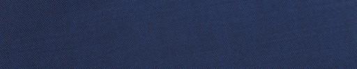 【Ca_91s61】ブルーパープル