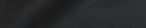 【Ca_02w40】ブラック
